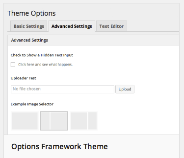 options-framework-1