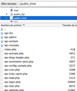 Ficheros de un WordPress en el servidor